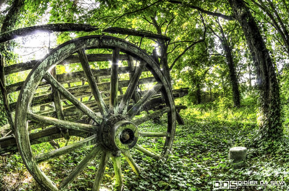 Caleche perdu dans les bois - Mouai - France.jpg
