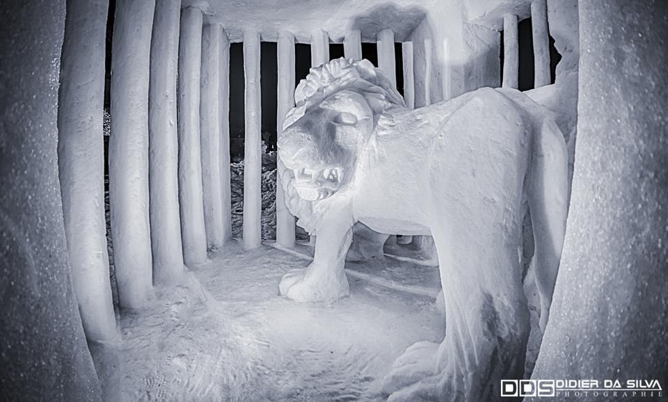 Lion glacé- Valloire - France.jpg